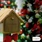 O clima de Natal ganha trilha sonora com lindos Corais