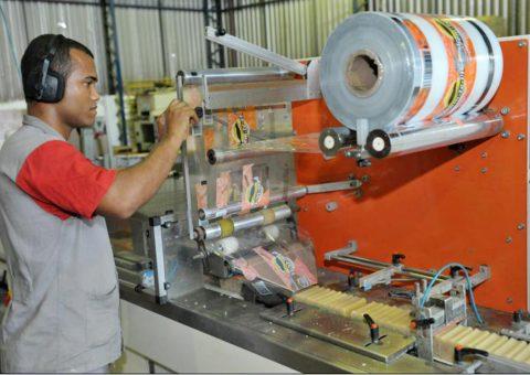Produção do Sabão em Barra Bem Te Vi