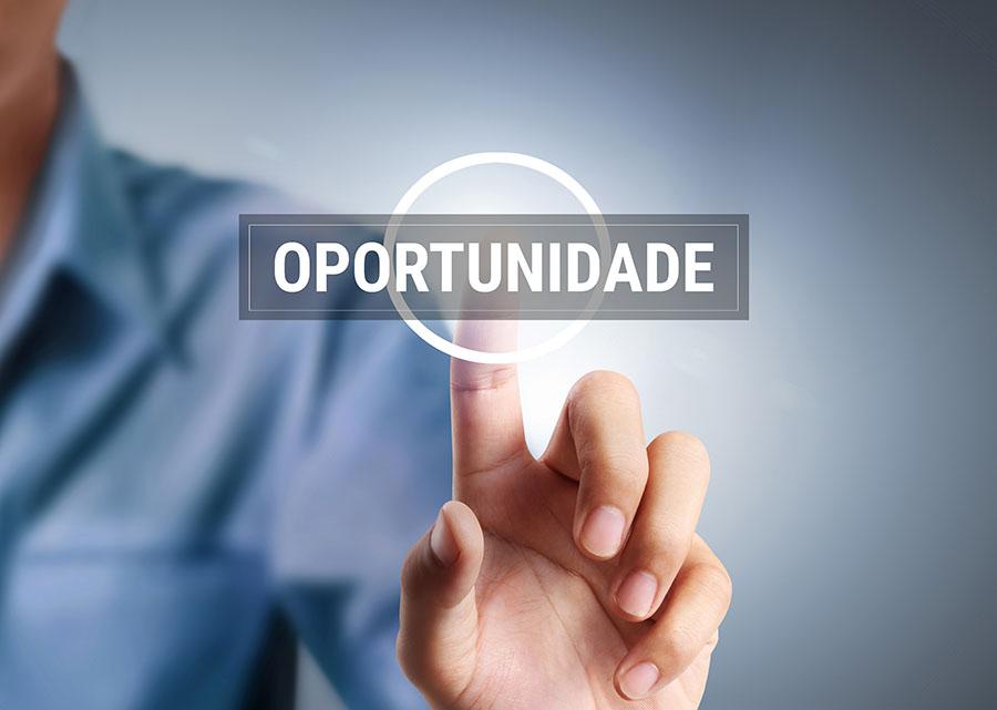Raiz Latina Abre Oportunidade de Trabalho pelo Brasil