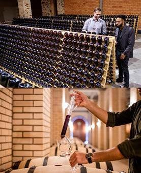 Circuito do Vinho: roteiro com experiências exclusivas em 14 vinícolas no Sul