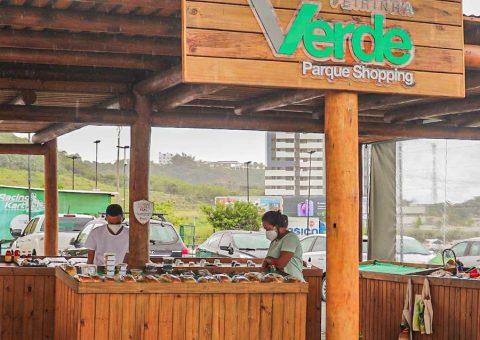 Dia da Árvore: Parque Shopping e Semarh farão doação de mudas nesta terça (21/9)